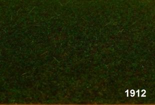 1912 - Moor kurz