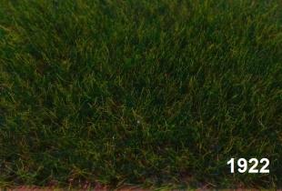 1922 - dunkelgrün lang