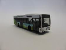 P1170101 (800x600)